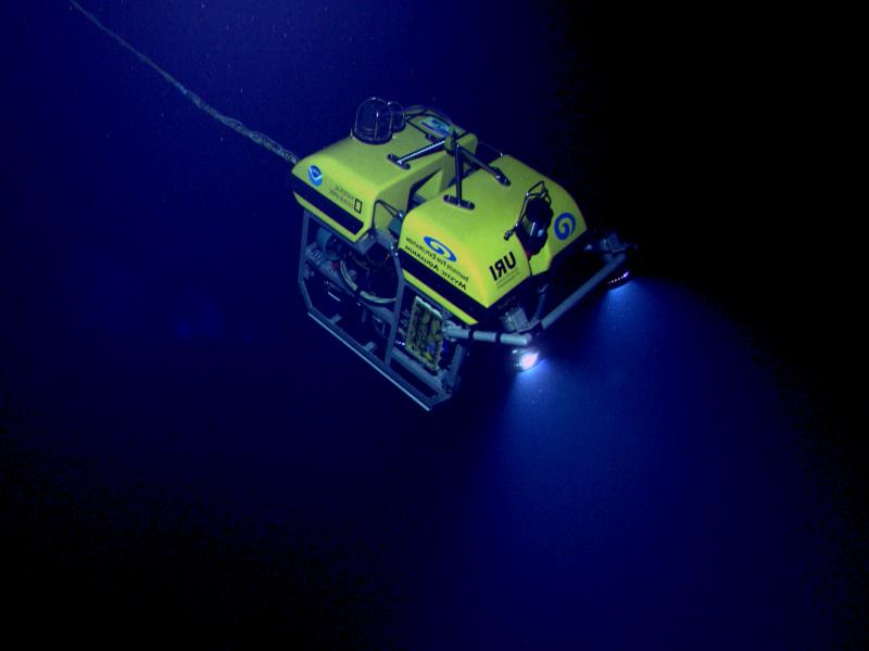 Подводная фото и видеосъемка Санкт-Петербург