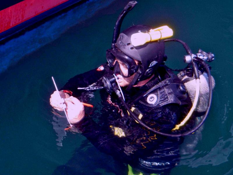 водолазное обследование акватории